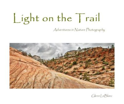 Light on the trail